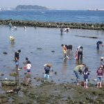 江川海岸の潮干狩りの口コミをチェック!ウユニ塩湖でアサリもとれる?